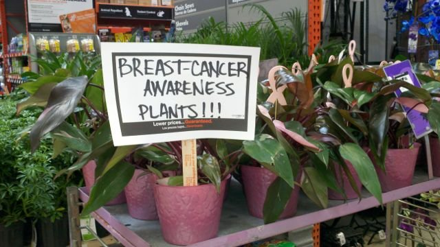 plantsvsmall Say it with breast cancer