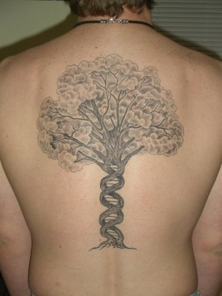 tree dna DNA Ink